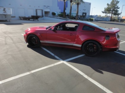 shelby_super_snake_red (5)